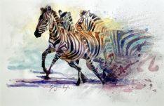 Zebra Watercolour Painting